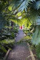 Finfina trädgården i La Paz